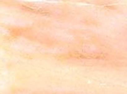 Marmor: Rosa Aurora Estremoz